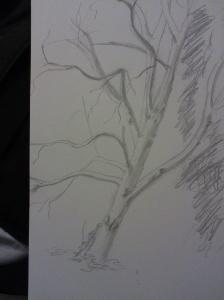 tree2 001